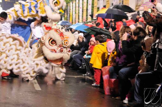 2011-san-francisco-chinese-new-year-611