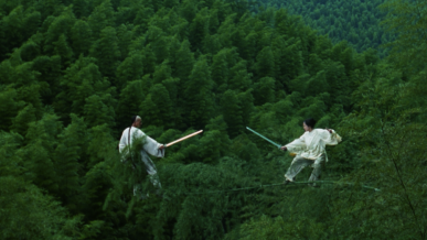 crouching-tiger-hidden-dragon-wo-hu-cang-long-2000-fight-sequence-movie-still